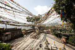 Kathmandu Prayer Flags Royalty Free Stock Photos