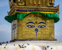 kathmandu stupaswayambhunath Royaltyfri Bild