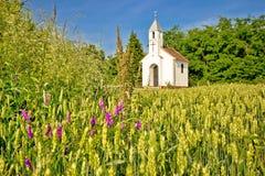 Katholische Kapelle in der ländlichen landwirtschaftlichen Landschaft Lizenzfreies Stockfoto