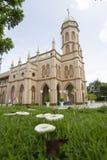 Katholische Kathedrale Lizenzfreies Stockbild