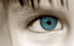 Kathryns Eye. Innocent Eyes stock photos
