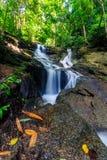 Kathu siklawa w tropikalnym lasowym Phuket, Tajlandia Zdjęcie Stock