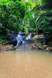 Kathu siklawa w tropikalnym lasowym Phuket, Tajlandia Obraz Royalty Free