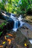 Kathu siklawa w tropikalnym lasowym Phuket, Tajlandia Obrazy Stock