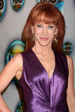 Kathy Griffin Stock Image