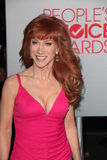 Kathy Griffin Stock Photography