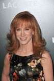 Kathy Griffin royalty free stock photography