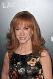 Kathy grip royaltyfri fotografi