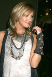 Katie Cassidy Royalty Free Stock Image