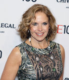 Katie Couric. Arrives on the red carpet for Time's 100 Most Influential People gala at Rose Hall, Home of Jazz at Lincoln Center on April 29,2014 in NY Royalty Free Stock Photo