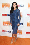 Katie Lee. NEW YORK-APR 19: Katie Lee attends the Food Bank for New York City`s Can-Do Awards Dinner 2017 at Cipriani`s on April 19, 2017 in New York City Royalty Free Stock Photo