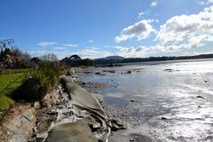 Katikati wybrzeża linia - MacMillan rezerwa Zdjęcia Royalty Free