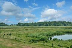 Katinger watt, naturreserv, norr Frisia, Tyskland Arkivfoton