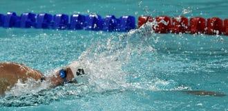Katinka HOSSZU HUN. Hong Kong, China - Oct 29, 2016.  Katinka HOSSZU HUN swimming in the Women`s Freestyle 800m Final. FINA Swimming World Cup, Victoria Park Royalty Free Stock Photography