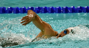 Katinka HOSSZU HUN. Hong Kong, China - Oct 29, 2016.  Katinka HOSSZU HUN swimming in the Women`s Freestyle 800m Final. FINA Swimming World Cup, Victoria Park Royalty Free Stock Images