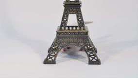 Katje die rond dichtbijgelegen Reis geïsoleerde Eiffel lopen, stock footage