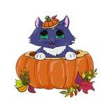 Katje in een illustratie van pompoenhalloween Royalty-vrije Stock Afbeeldingen