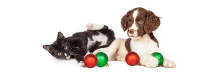 Katje en Puppy het Spelen met de Banner van Kerstmisbollen Royalty-vrije Stock Afbeeldingen