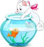 Katje en vissen Stock Foto