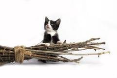 Katje het verbergen achter een bezem op witte achtergrond stock afbeeldingen