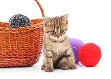 Katje met ballen van garen Stock Afbeelding