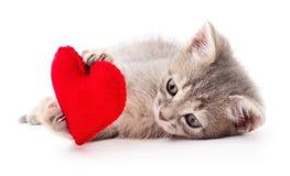 Katje met rood hart Stock Fotografie