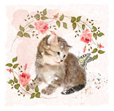 Katje met rozen en vlinder Royalty-vrije Stock Foto's