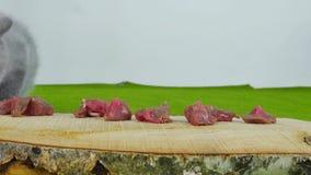 Katjes die ruw vlees eten stock footage