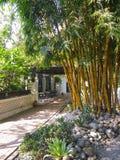 Katmandu trädgård av drömmar Arkivbilder