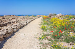 Kato Paphos Archaeological Park, Cyprus. Royalty Free Stock Photography