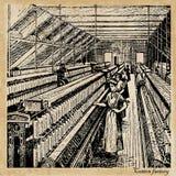 Katoenen fabriek Stock Foto's