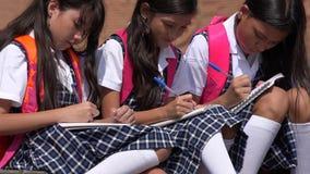 Katoliccy dziecko w wieku szkolnym Pisze Będący ubranym mundurek szkolnego fotografia royalty free