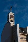 Katolicka katedra Zdjęcia Stock