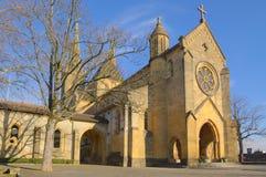 Katolsk domkyrka i trees Royaltyfria Bilder