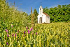 Katolskt kapell i lantligt jordbruks- landskap Royaltyfri Foto