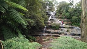 Katoomba秋天,蓝色山脉在新南威尔斯澳大利亚 库存照片