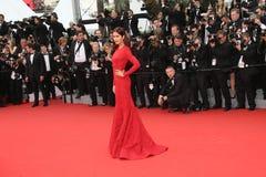 Katrina Kaif Stock Images