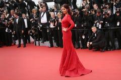 Katrina Kaif Royalty Free Stock Image