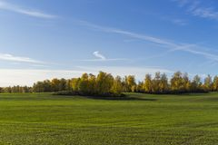 Katrineholm Sweden. Beautiful nature and landscape photo of colorful autumn day. Nice outdoors image. Calm, peaceful, joyful and happy picture Royalty Free Stock Image