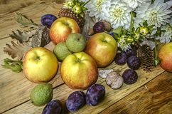 Katrinplommoner, äpplen, fikonträd och gräsplanmuttrar med en bukett av vita dahlior Arkivfoto