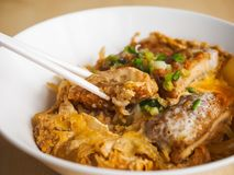 Katsudon a kind of Japanese food. Japanese food made from pork baked with eggs, topped on rice Royalty Free Stock Photos