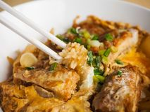 Katsudon a kind of Japanese food. Japanese food made from pork baked with eggs, topped on rice Stock Images