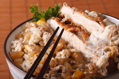 Katsudon - tonkatsu pork breaded with eggs and rice macro. horiz Stock Images
