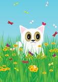 Katt. Royaltyfri Fotografi