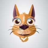 Katt - Arkivbild
