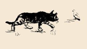 Katt & fågel Arkivbild