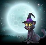 Katt för allhelgonaaftonfullmånehäxa Royaltyfri Foto
