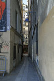 Katt-fiske gata i Paris Royaltyfri Fotografi
