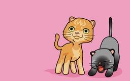 katt gulliga två Arkivbilder