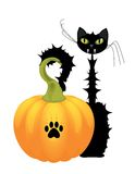 katt halloween Royaltyfri Illustrationer